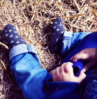 Baby's ervaren het boerenbestaan op Lutje Zuuderham