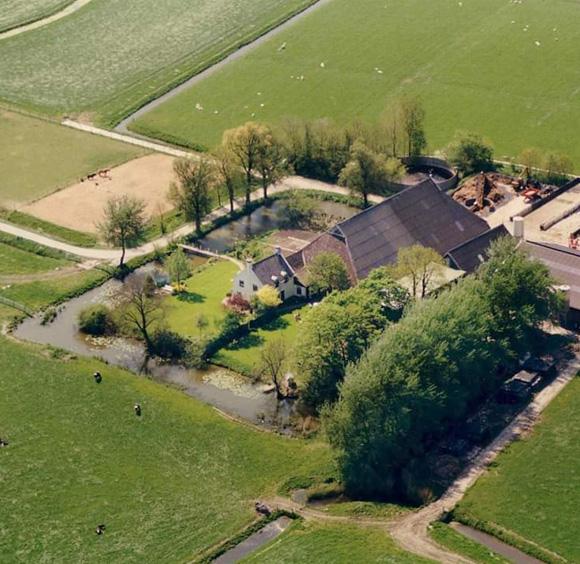 Boerderij Zuiderham boerengolf Westerkwartier Groningen