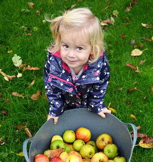Gastouder zuiderham waar meisje appels plukt veilig